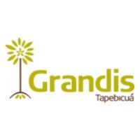 Grandis 350x350